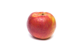 Red boskoop apple Royalty Free Stock Photos