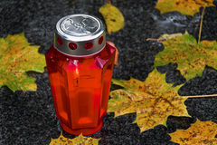 Red Bottle and Autumn Leaves Stock Photography
