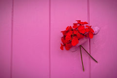 Red bouquet on pink window, landscape. Red bouquet of geraniums left as a love message on a pink window. Landscape orientation Stock Image