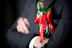 Red bow. Bow with a flower of red tape Royalty Free Stock Images