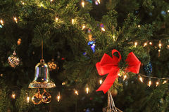 Red bow and bell decorated on christmas tree Stock Images