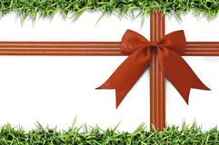 Red bow and border of fresh green grass on white. Royalty Free Stock Photos