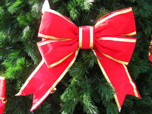 Red Bow on Christmas Tree. Big red bow with gold trim on Christmas tree stock images