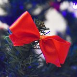 Red bow on Christmas tree. As a sign of giving present Stock Photos