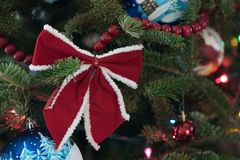 Red bow on the Christmas tree. Red ribbon bow on the Christmas tree Stock Images