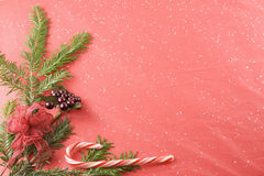 Red bow on fir branch on red background Royalty Free Stock Image
