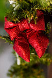 Red bow and fir branches.. Christmas decoration on the street. Stock Photo