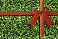 Red bow on  fresh green grass background. Royalty Free Stock Images
