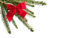Red bow-knot on a christmas tree branch Stock Photo