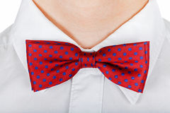 Red bow tie Stock Images