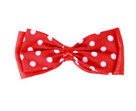 Red bow tie Royalty Free Stock Image
