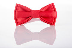 Red bow tie on a white background Royalty Free Stock Image