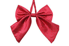 Red Bow tie for women Royalty Free Stock Photos