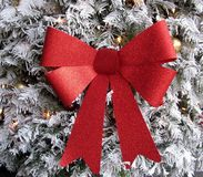 Red bow on a white Christmas tree. Red glittering bow on a white Christmas tree Royalty Free Stock Photos