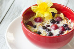 Red bowl of cereal with berries Royalty Free Stock Photo