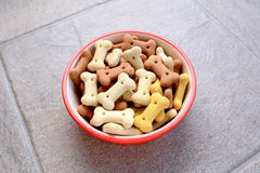 Red bowl full of dog biscuits on grey tile. Red pet food bowl full of bone-shaped dog biscuits, on a grey tile floor Royalty Free Stock Photos