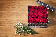 Red box in box. Red rose in black gift box on wood table Stock Image