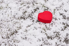 Red box heart shaped on snow. Y ground in the winter park Royalty Free Stock Image
