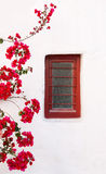 Red box on a white building with beautiful bougainvillea flowers Stock Photos