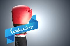 Leadership and career concept Royalty Free Stock Photo