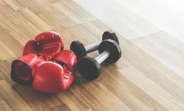 Red boxing gloves with dumbbells on wooden floor. Copy space Stock Photography