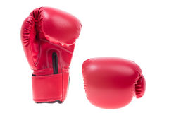 Red boxing gloves isolate Royalty Free Stock Photo