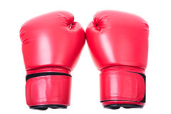 Red boxing gloves isolate Stock Image