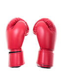 Red boxing gloves isolate Royalty Free Stock Image