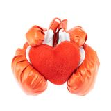 Red boxing gloves isolated Stock Photography