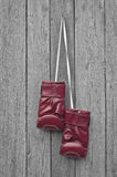 Red boxing leather gloves hangs on a nail Stock Images