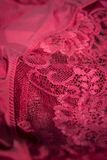Red bra detail Royalty Free Stock Images