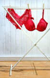 Red bra and panties drying on clothes rack. Red bra and panties drying on clothesline Stock Photos
