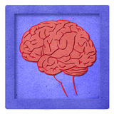 Red brain papercraft Royalty Free Stock Images
