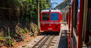 Red Brazilian Train Best Jungle, Tijuca Rio de Janeiro royalty free stock image
