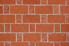 Red brick. Section of red brick wall royalty free stock photos