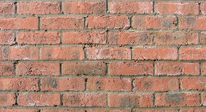 Red brick background. Regular pattern of red bricks with horizontal mortar joints Stock Image