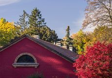 Red brick building among the autumn trees with red and yellow leaves royalty free stock image