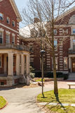 Red Brick Buildings at Harvard Royalty Free Stock Photo