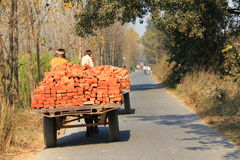 Red Brick are carrying on a bullock cart Royalty Free Stock Images