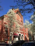 Red brick church white flowering trees Stock Images