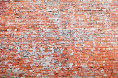 Red brick dirty background. Stock Photography