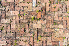 Red brick floor background Royalty Free Stock Images