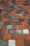 Red  brick ground Royalty Free Stock Photography