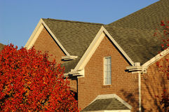 Red Brick Home Detail. View showing front brick and roof. Red tree in foreground royalty free stock images