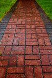 Red Brick path on lawn Royalty Free Stock Images