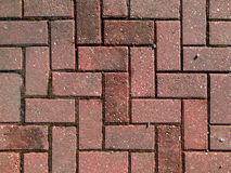 Red brick paving Stock Image