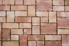 Red brick paving stones Royalty Free Stock Image