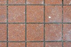 Red brick paving stones on a sidewalk Royalty Free Stock Photos