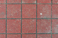 Red brick paving stones on a sidewalk Royalty Free Stock Images