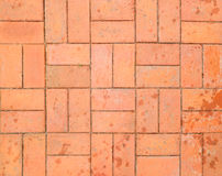 Red brick paving stones on a sidewalk Stock Images